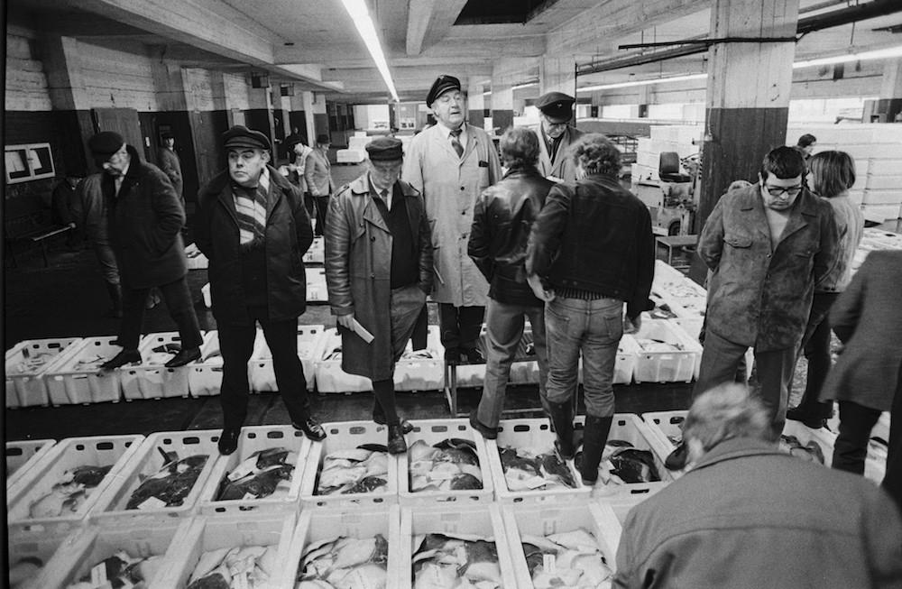 fischauktion-am-fischmarkt-in-hamburg-april-1973