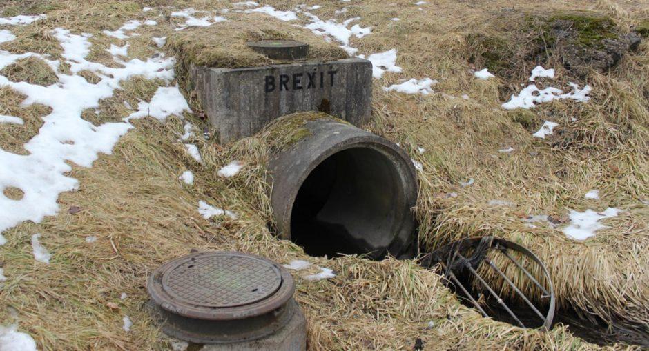 Vlady Art Brexit